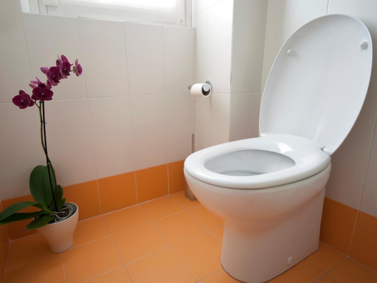 iStock-13234958_toilet-orchid-orange-tile_s4x3.jpg.rend.hgtvcom.1280.960
